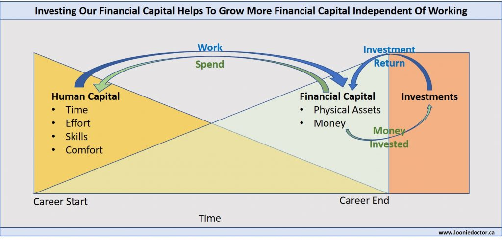 human financial capital