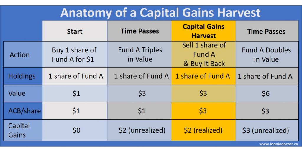 capital gain tax harvesting
